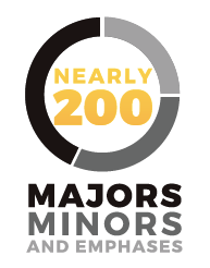Majors-minors-emphases