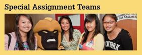 RHD Special Assignment Teams