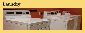 Services and Programs Laundry