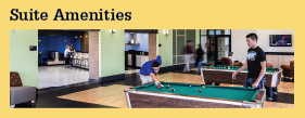 Residents Needed Information Suite Amenities