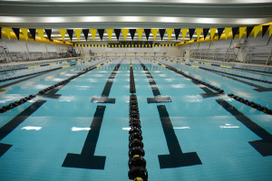 Albee Pool