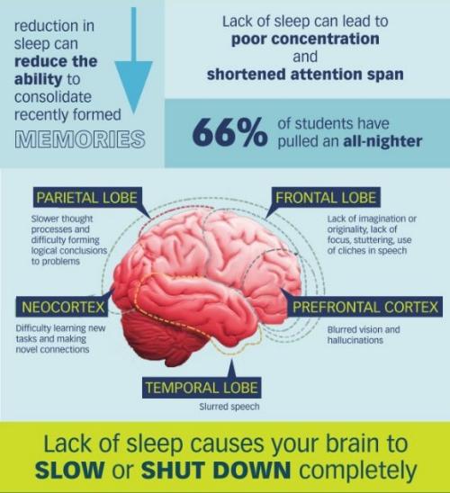 infograph-sleep