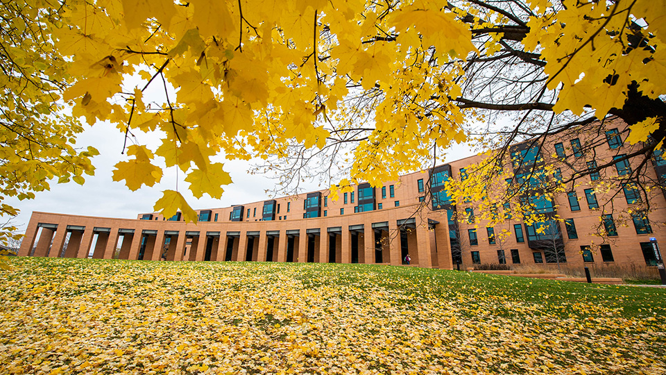 Fall preview: Campus beauty is about to peak