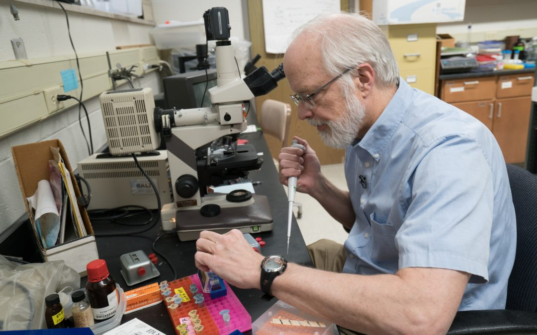 UWO chemists contribute to chromosome research in 'Science'