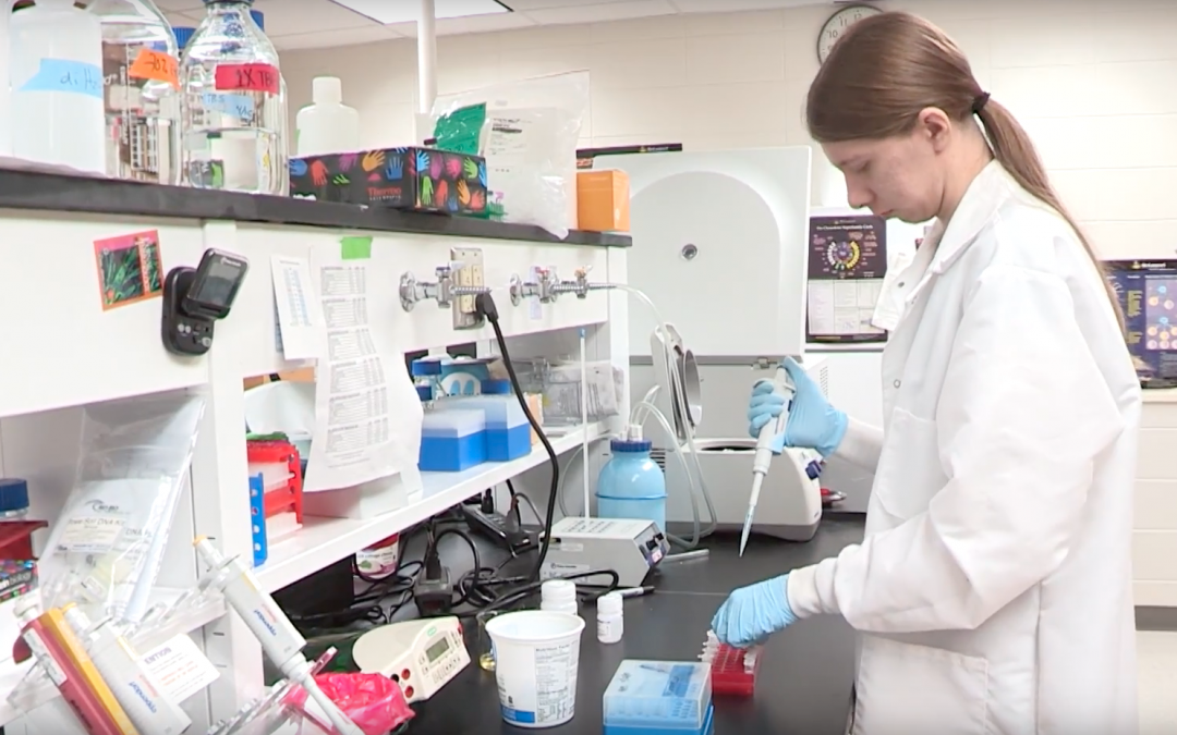 UWO grad student tests new scientific model for obesity