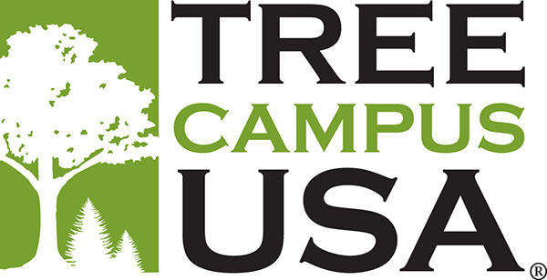 UW-Fox Valley campus recognized as Tree Campus USA