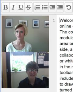 Screenshot of an online session.
